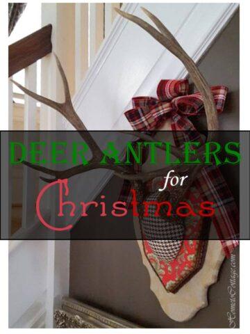 HometoCottage.com Deer Antlers for Christmas