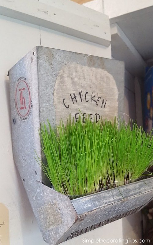SimpleDecoratingTips.com chicken feeder planter