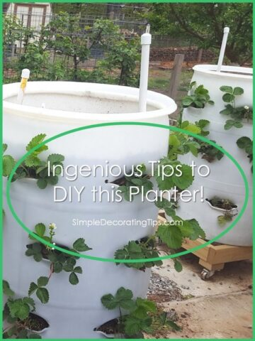 Ingenious Tips to DIY this Vegetable Planter!