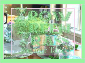 Grow Green Grass For Your Table
