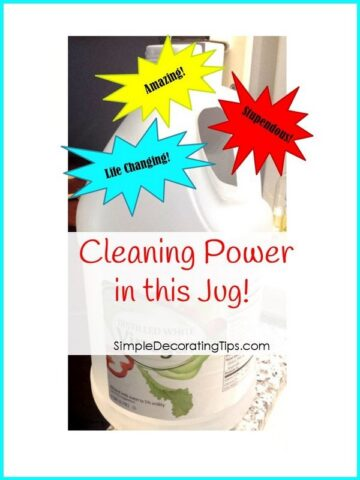 Cleaning Power in this Jug