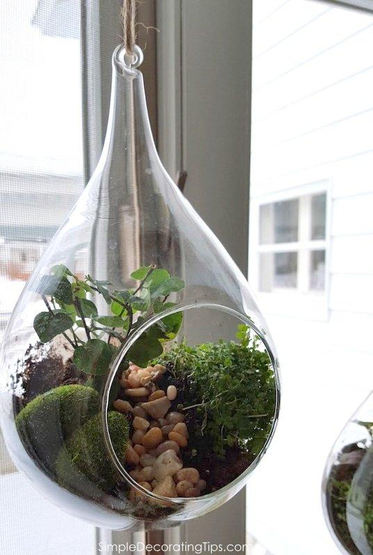 SimpleDecoratingTips.com hanging mini terrarium