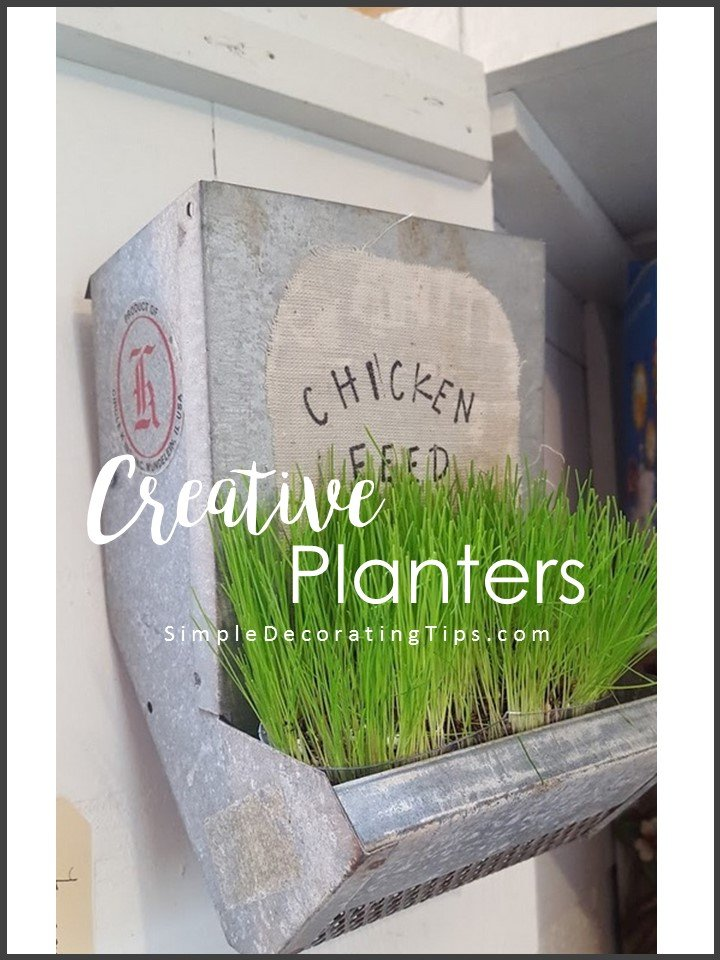 Creative Planters - Simple Decorating Tips