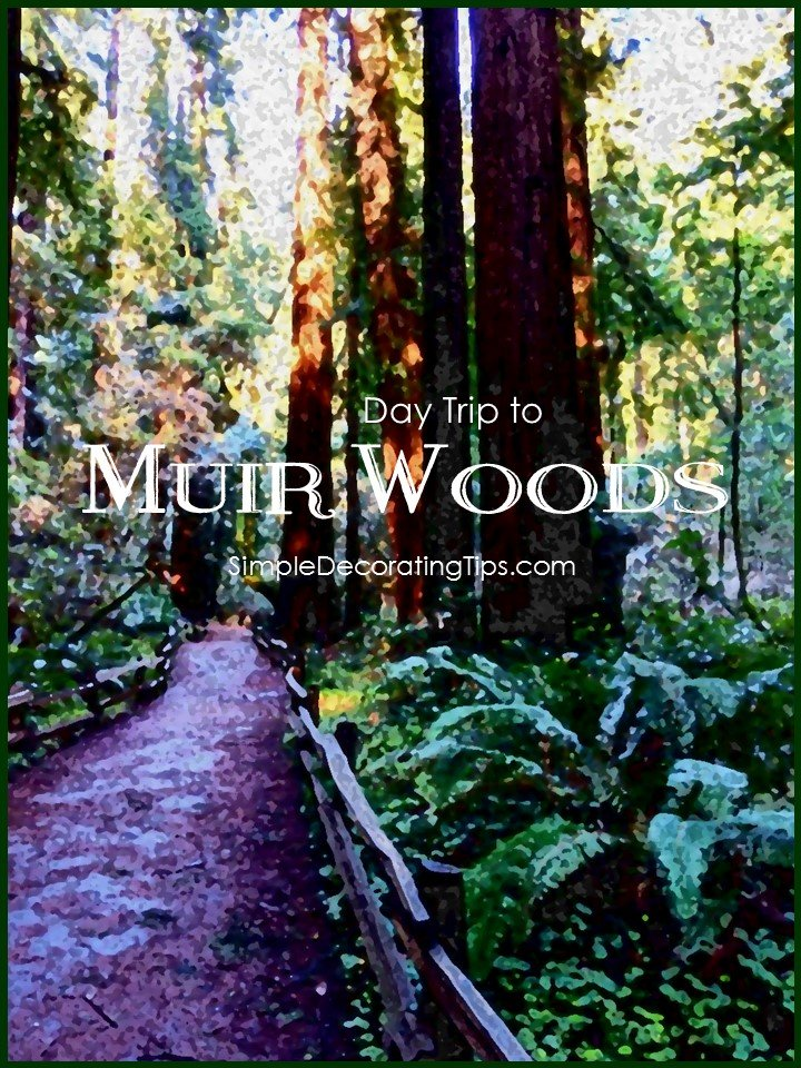MUIR WOODS - SIMPLE DECORATING TIPS