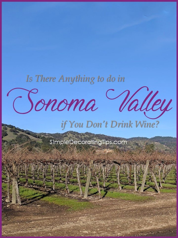 IS THERE ANYTHING TO DO IN SONOMA VALLEY IF YOU DON'T DRINK WINE?
