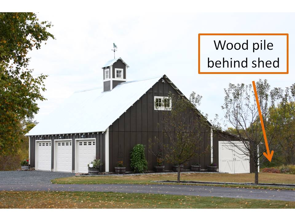 HometoCottage.com wood pile behind shed