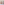 DIY Vintage Window Shadow Box