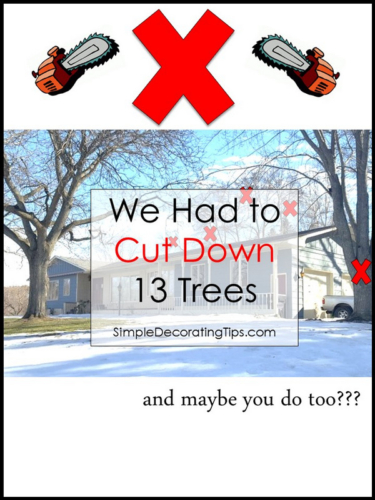 SimpleDecoratingTips.com we had to cut down 13 trees