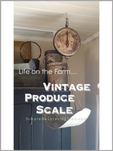 WHEN I WAS LITTLE... A VINTAGE PRODUCE SCALE