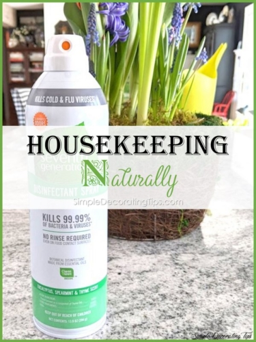 Housekeeping Naturally