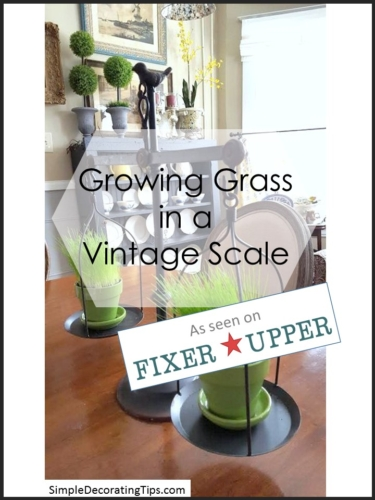 Growing Grass in a Vintage Scale