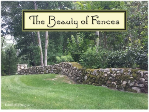 The-Beauty-of-Fences1