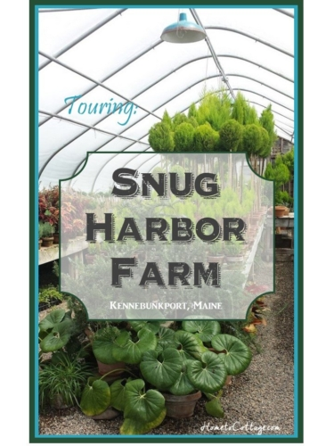 touring Snug Harbor Farm, Maine